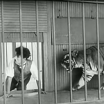 The Circus - Charlie Chaplin tries to escape from the cage of the sleeping lion, not realizing that the door leaps to a wide awake tiger