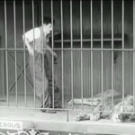 The Circus - Charlie Chaplin realizes he's run into the cage of a sleeping lion - with the door locked behind him!