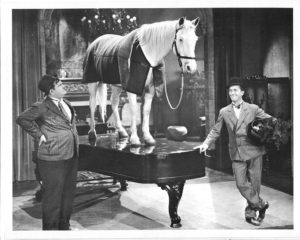 Wrong again - the horse Blue Boy on top of the piano, courtesy of Oliver Hardy and Stan Laurel
